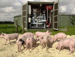 Биогазовая установка на навозе