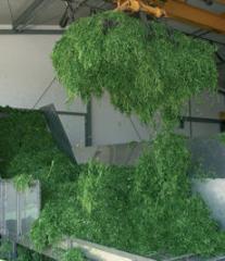 Биогазовая установка на растительном сырье