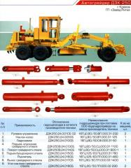 Hydraulic cylinder of rise and lowering of a