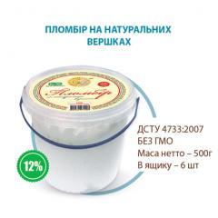 Ice cream of 500 g in bucke