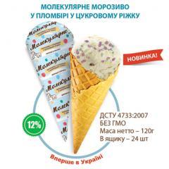 Molecular ice cream ice cream in sugar horn