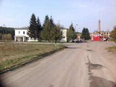 CUES PIG FARM 15 of km from Kiev.