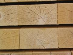 Preparations of the wood for europallets, a palle