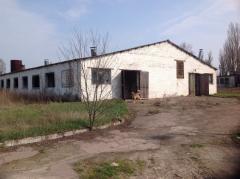 The complex is stock-raising, farm, pig farm, Kiev