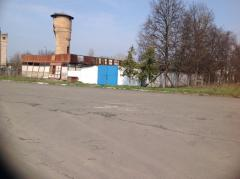 Real estate object 24 hectares Kiev region, pig