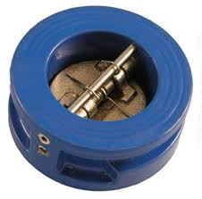 Backpressure interflange valves