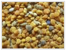 Pollen (pollen pellet)