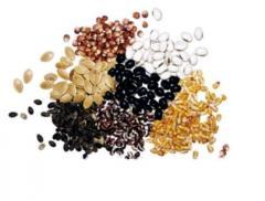 Протруйник насіння ХайКот Супер Extender, 1*6,4 л