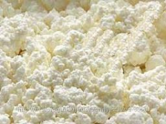 Cottage cheese sour-milk