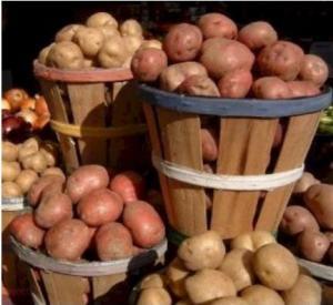 Картофель сортовой. Картофель. Купить картофель.