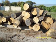 I will sell a sawlog the Oak 1, 2, 3 grade 26-34,