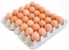 Яйцо куриное, столовое Высшей категории