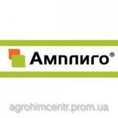 Ampl_go of 150 ZC 5 l