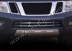 Grid in bumper nerzhv. Nissan Pathfinder