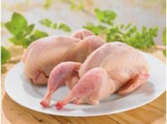 The quail meat frozen
