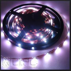 SMD3528 light-emitting diode