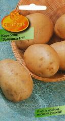 """Насіння картопля """"Золушка F1"""","""