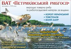 Речная рыба -мальки карпа, толстолобика, белого