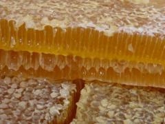 Honey with a uterine milk