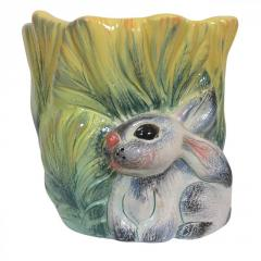 Flowerpot the Hare in cabbage