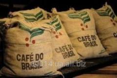 Кофе Арабика Бразилия Сантос,  натуральный,