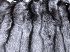 Skin of silver fox