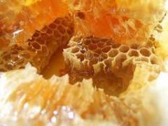 Honey with a uterine milk sale, wholesale Ukraine,