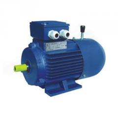 Электродвигатель со встроенным электромагнитным