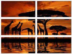Модульна картина Африка