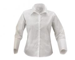 Блузки белые. Одежда женская