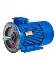 Асинхронный общепромышленный электродвигатель