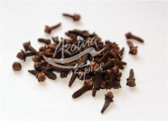 Carnation. Spices, spices WHOLESALE