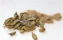 Cardamom whole and ground. Spices, spicery.
