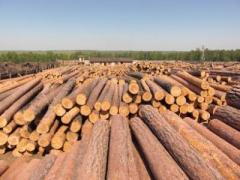 Bar round timber