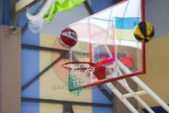Schild van de professionele basketbal van Organic glass