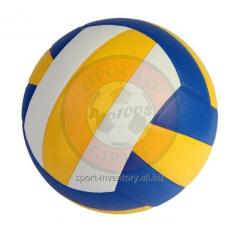 Bal volleybal