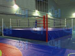 Ринг боксерский на помосте мастерский...