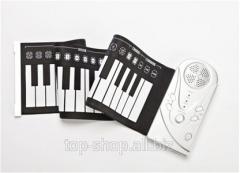 Πιάνο με ουρά