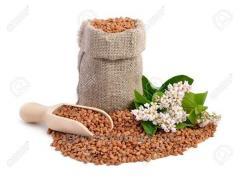 Buckwheat Antariya's grade (pos_vniya