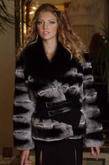 Fur coat a short fur coat from a shinshillovy