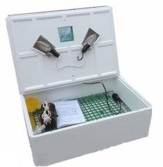 Инкубатор для яиц Наседка ИБ-100 яиц с