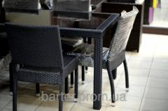 Set of a wicker furniture tekhnorotang