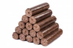 Fuel briquette of Nestr