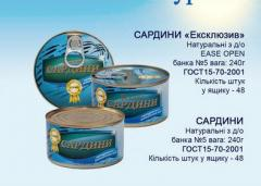 Sardine in oil natural from the producer