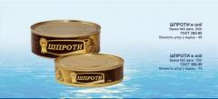 Sprats in oil from the producer