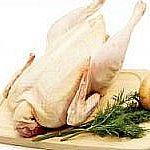 Курица бульонная