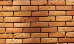 Кирпич Шишка оранжевый на белом цементе