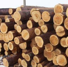 Wood construction, pine