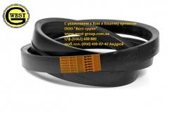 Maple belts for agricultural machinery, transport