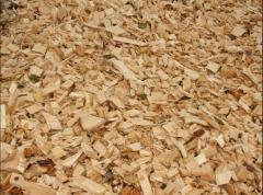 Щепа и дрова хвойных и лиственных пород дерева от